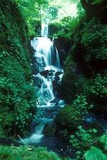 Sample Web Page Image - Waterfall in Summer